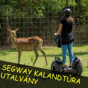 Segway kalandtúra utalvány 1 főre